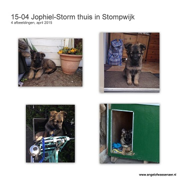 Storm thuis in Stompwijk